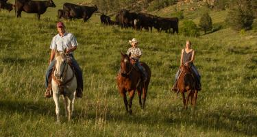 Cammack Ranch