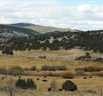 Pipe Springs Ranch