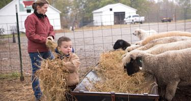 Uptown Farms