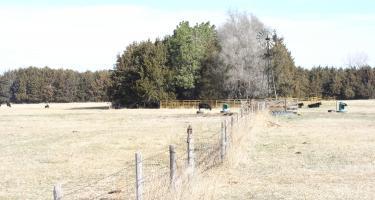 Pelster Ranch