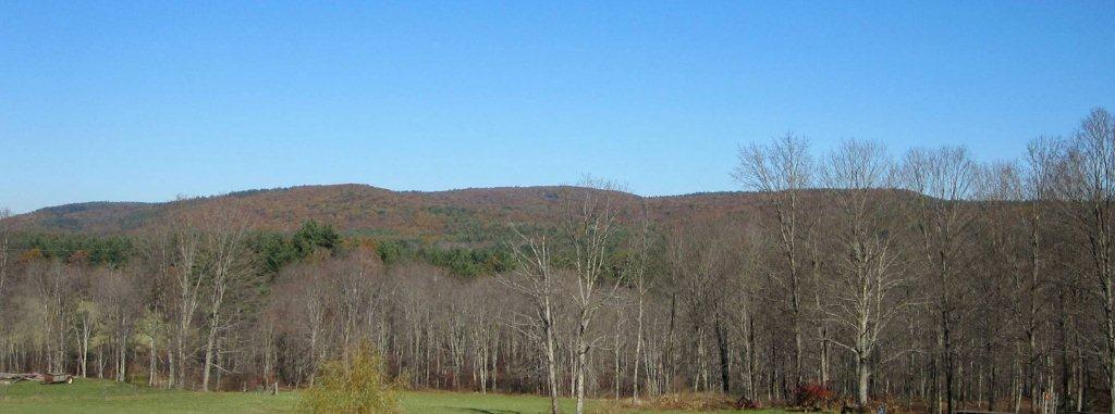 Brushy Mountain easement, photo courtesy of W.D. Cowls Inc.